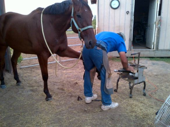 Leo with Roland getting his pedicure