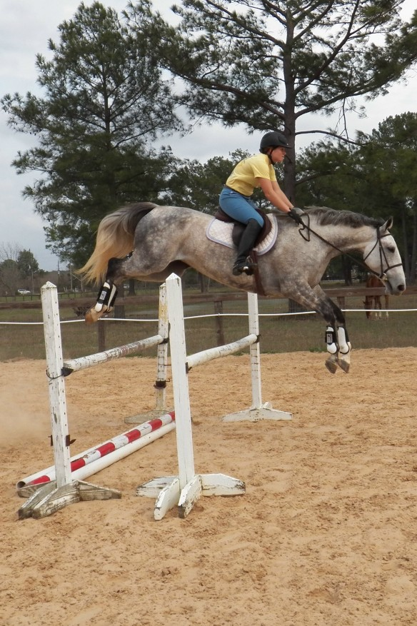 The standards (what hold the jump) are five foot.  Feather is clearing this with ease.