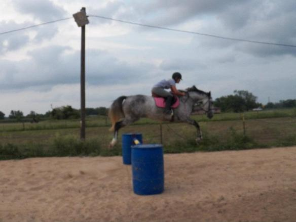 The first time we jumped her, we were caught off-guard.  These barrels are a little over three foot high and Feather was easily jumping over four foot.  She is a natural and while we are taking it slow, she has not yet given us a clue as to exactly how high she can jump.  But boy, she can jump!
