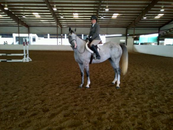 A year later Feather, aka Flagmount's Irish Freedom, is a show horse.  What all she will do in her career is pure speculation at this point.  But she and Lauren have come a long way in this first year.  We cannot wait to start the 2013 season.
