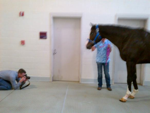 Dr. Marsh getting down on the ground to get up to date pictures of Bruno's hoof.  Bruno was pretty interested!