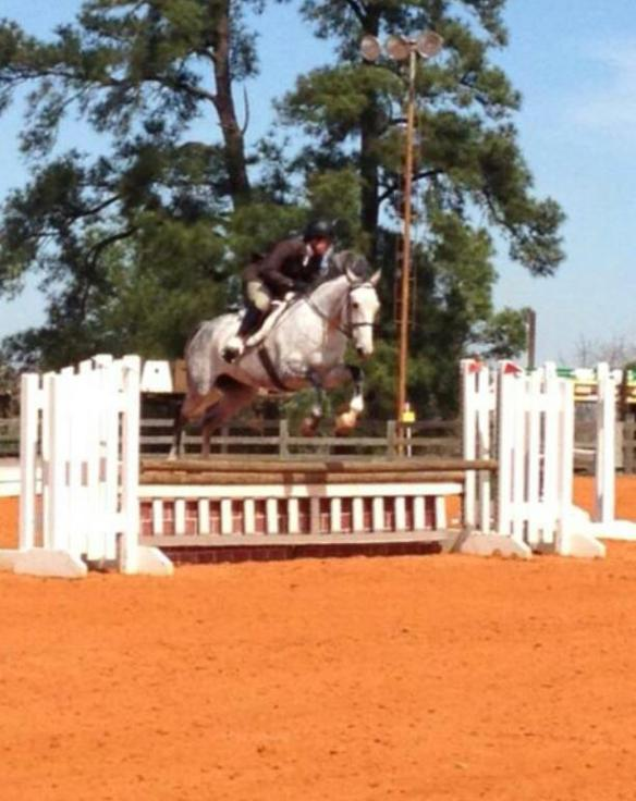 Feather is perfect (to my eye anyway) over this jump.