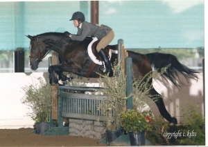 """Mickey and Lauren gliding over a """"hunter""""  jump.  Notice only colors found in nature and natural props/"""