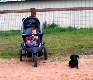 Lula steadfastly waiting with Kendyll as mom and sis ride.