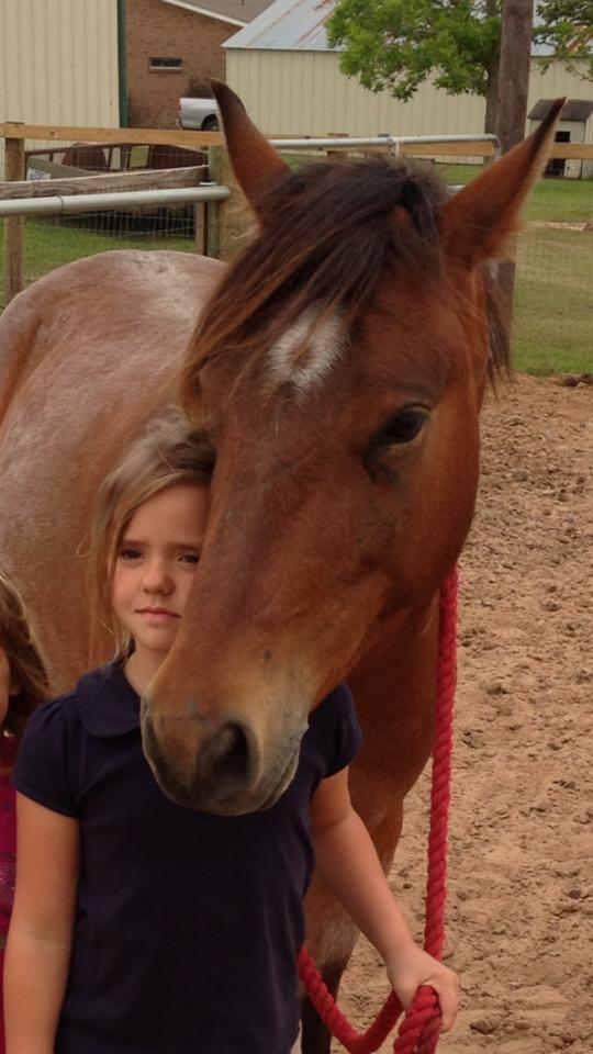 Adelena with new pony Scholar.  I am hoping she is deeply surpressing immense joy in her new pony.