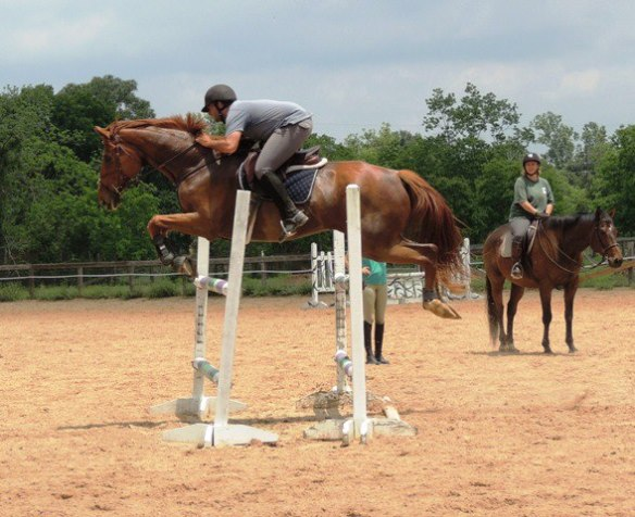 Big horse clearing a sizeable jump.