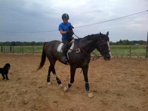 Lula getting a lift back to the barn.  Kona said he wanted to ride, too!