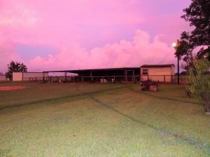 Pink skies of dawn coloring the barn.