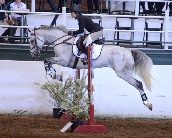The back of this horse may be the closest Lauren ever will come to flying without wings.