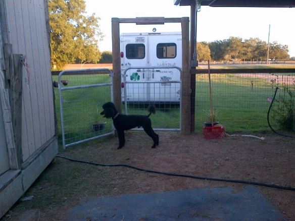 The  trailer is pulled up right next to the gate.