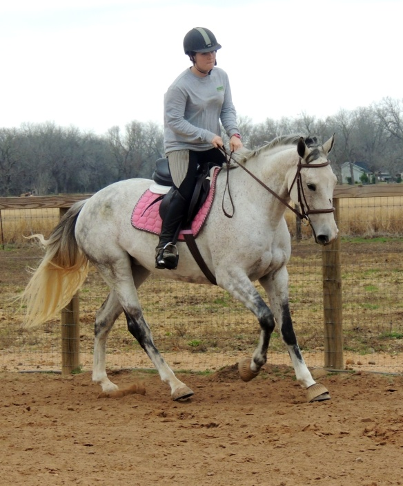 Pre-horse ride.