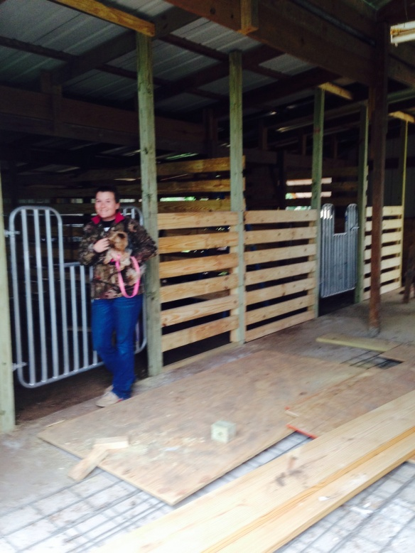 Stalls are almost ready for horses.