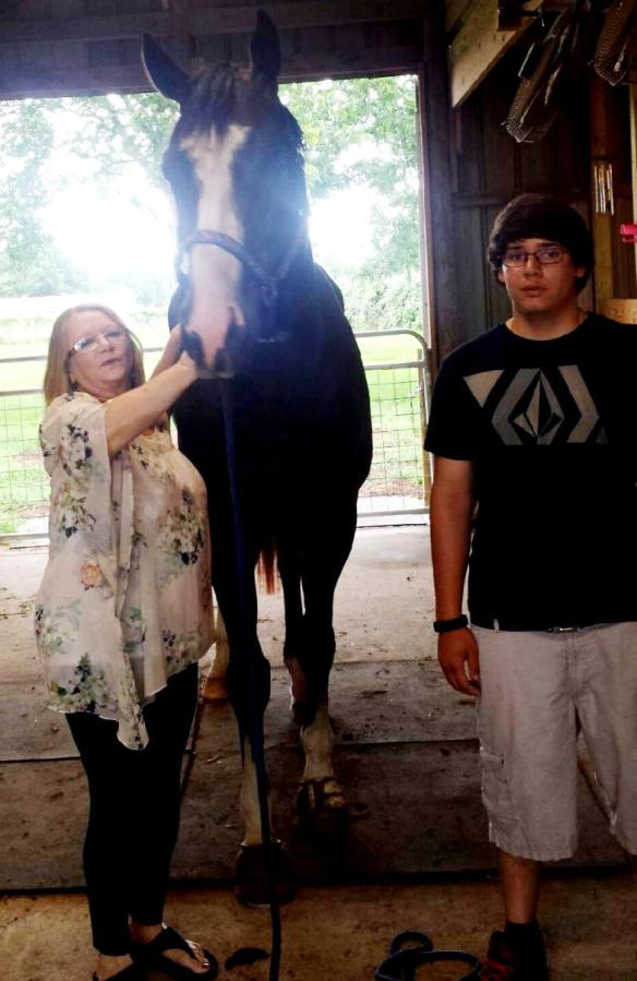 Christian wasn't so sure about the big horse but Deb was totally hands-on.