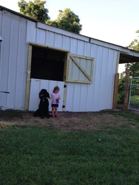 Kona and Kendyll in front of the newly made feed room door.