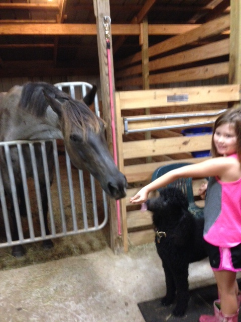 Jordyn and Kona getting to know Kalani.