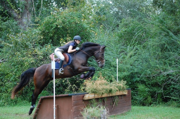 Mickey was made for eventing.  What a great time he had.