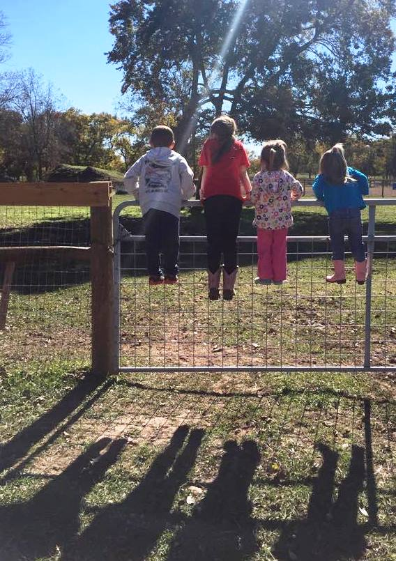 The grandkids hanging on the back fence, Riley, Jordyn, Lexi and Kendyll
