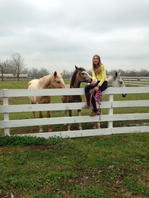 Mia hanging with the mares