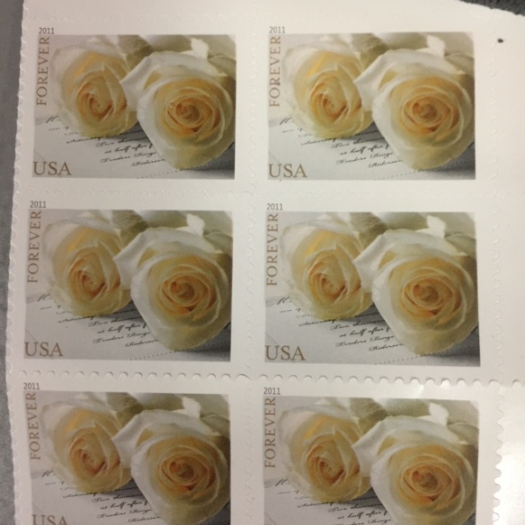 The stamps I bought as I sent my mother's stock certificate away. My father's favorite rose was the John F. Kennedy rose and this is it. Wierd.