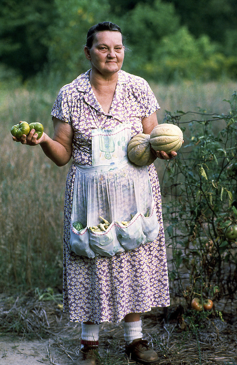 This is Cindy working on her vegetable gathering prior to getting supper on the table.