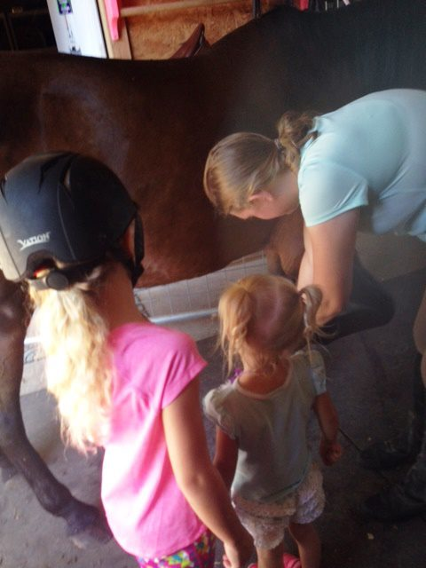 Isabel teaching Madison and Micenzie how to brush the horse.